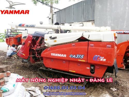 Máy gặt đập liên hợp nhật Yanmar CA 315 đã qua sử dụng